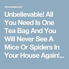 Unbelievable! All You Need Is One Tea Bag And You Will Never See A Mice Or Spiders In Your House Again! | Chics Beauty