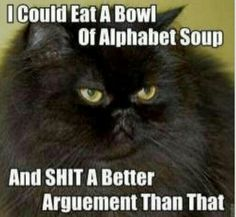 "Ha! the cat is right. Im tired of needless drama & nonsense fluff that comes out of some people's mouths. If you plan to debate or argue with me bring maturity, truth and facts to the table with you, not your close mindedness,  attitude, lies or assumptions. ""aint nobody got time for that!"" Lol love sweet brown :)"