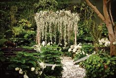 Wedding venues melbourne gardens Ideas for 2019 Forest Wedding Venue, Enchanted Forest Wedding, Unique Wedding Venues, Woodland Wedding, Wedding Themes, Garden Wedding, Wedding Ceremony, Dream Wedding, Trendy Wedding