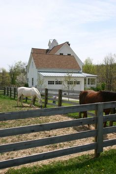 horses by the house - always a good thing