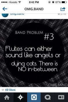 As an avid flute player, I can attest for this.<<<< as a clarinet player who played next to flute players I can say this is true Flute Jokes, Music Jokes, Band Jokes, Music Humor, Funny Music, Flute Problems, Band Problems, Marching Band Memes, Band Nerd