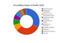 Evidence: A 2012 circle chart from the American Foundation for Suicide Prevention that shows the leading causes of death by color  Argument: This could be another effective visual aid because it is simple, yet it clearly shows that we need to do something to change our suicide rates.