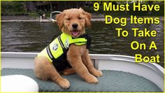 Dogs+Gone+Boating:+9+Must+Have+Dog+Items+To+Take+On+A+Boat+ ... see more at InventorSpot.com