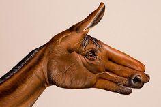 Super weird hand paintings by Guido Daniele