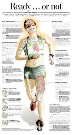 Running- long distance- the importance of prepping