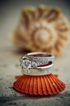 engagement ring & wedding band on shell photo