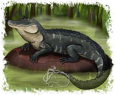 American Alligator Daily Creature Print by NadilynBeatosArt, $10.00