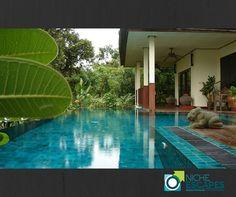 An authentic Thai experience awaits you at Gecko Villa.