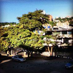 Caracas: sunny afternoon