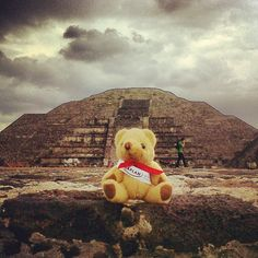More #photos from #Mexico! The #KaplanBear is at #Teitihuacán #pyramids just outside #MexicoCity. #CiudadDeMéxico by KIC Pathways - University Preparation Courses, via Flickr