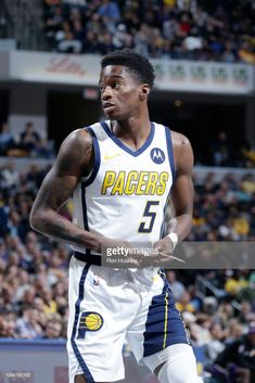 Edmond Sumner of the Indiana Pacers looks on during the game against...  Basketball LeaguesNba BasketballBankers Life FieldhouseIndiana ... 0ede34107