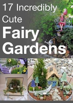 17 Incredibly Cute Fairy Gardens - Making one with Emma this Summer :) #Gardens