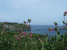 We took this on a walk near Tintagel- King Arthurs birth place.