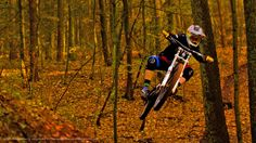 """Fly low"" ©2014 SnakeArtworX - Digital Art & Photography  Canon EOS 1100D + Sigma 30 F1.4 DC HSM A  #photography #sports #downhill #mtb #mountainbike #forest #autumn #ytindustries #marzocchi #canon #sigma"