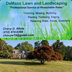One of Jimmy's favorite things to do is cut the grass. He loves a well kept yard. Since he can't ride a lawnmower yet we had to find someone else to do it so we don't wear out our sons. If you're looking for someone to do your lawn check out DeMaxx Lawn and Landscaping. Chevy and Sam are a great professional team and have very reasonable rates.