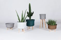 Handed By / Livingroom / Basket / Up collection
