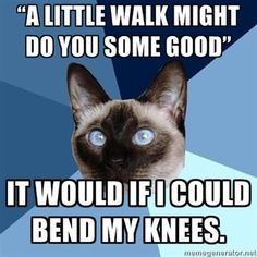 """A little walk might do you some good."" It would if I could bend my knees."