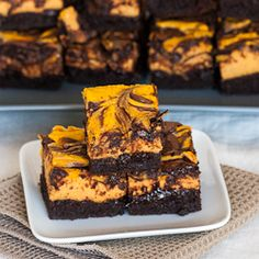 Chocolate Pumpkin Cheesecake Brownies - perfect for Thanksgiving, or just because.