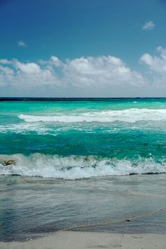 Ocean....