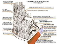 plan of the roman colosseum Roman History, Art History, Ancient Rome, Ancient History, Roman City, Roman Architecture, Geometric Decor, Social Science, Roman Empire