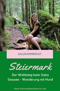 Der Waldsteig beim Salza Stausee in Bad Mitterndorf im Salzkammergut. Wanderung mit dem Hund. Bad Mitterndorf, Old Shool, Trekking, Wanderlust, Hiking, Vacation, World, Dogs, Movie Posters