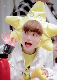 Taehyung, Songs, Plush Animals, Twitter, Babys, Fairy, Heart, Display, Babies