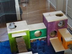 Play Houses - Twilight Chinchilla's Boredom Buster toys and Hamsters, Chinchillas, Rodents, Cute Small Animals, Small Animal Cage, Animals And Pets, Chinchilla Care, Rat Toys, Baby Squirrel