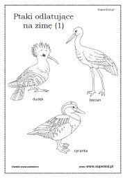 Znalezione Obrazy Dla Zapytania Wiosenne Kwiaty Karta Pracy Klasa 1 Humanoid Sketch Art Animals