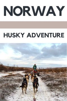 A Husky Adventure in