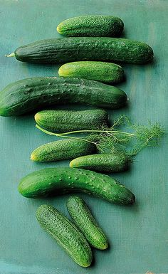cucumbers by dvita, via Flickr