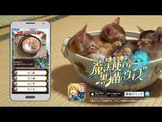 問答RPG 魔法使與黑貓維茲 CM 15s x 4 (繁中) #cat #mobile #game