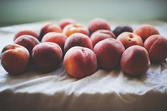 Peach jam by the little red house, via guide eating health solutions health naturally Healthy Fruits, Healthy Eating, Peach Jam, Mousse Cake, Just Peachy, Fruit And Veg, Recipe Of The Day, Food Styling, Cooking Tips