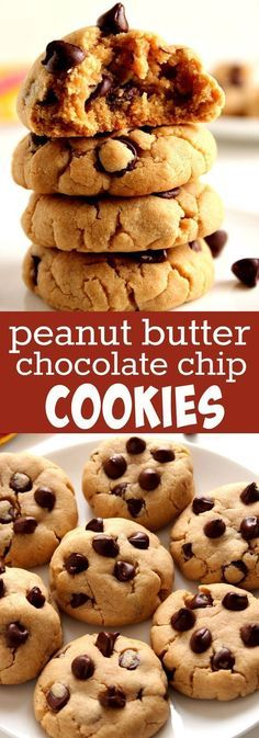 Peanut Butter Chocolate Chip Cookies Recipe - soft and thick peanut butter cookies with chocolate chips. Quick and easy cookie dough that can also be made into bars! *I plan on subbing the flour for oat flour, using dark chocolate chips, etc. Just Desserts, Delicious Desserts, Dessert Recipes, Health Desserts, Dessert Ideas, Yummy Food, Soft Cookie Recipe, Dessert Aux Fruits, Peanut Butter Recipes