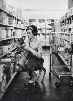 Audrey with Green Mansions co-star Ip, the fawn, at a grocery store in California, 1958. scan by rareaudreyhepburn from the book The Audrey Hepburn Treasures.