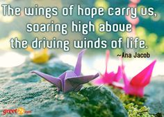 The wings of hope carry us, soaring high above the driving winds of life. 1000 Paper Cranes, 1000 Cranes, Craft Images, My Images, Kirigami, Chasing Pavements, Rainbow Quote, Make A Wish, How To Make