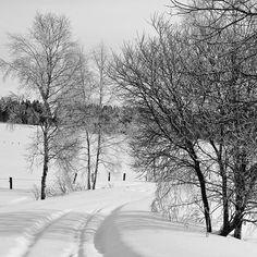 Landscape Winter Photography