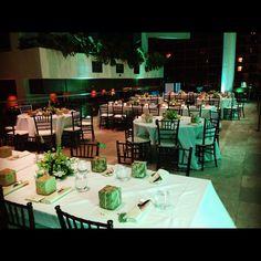 Trump Waikiki's Infinity Pool Deck, transformed into a tropical wedding reception dinner by night.