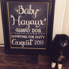 Big sister gifts google search sibling pregnancy announcement baby announcement custom chalkboard with dog nashville tennessee claire cohen lettering negle Images