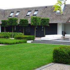 Green on black - elegant topiary and box hedging modern garden design Moderne tuin Tuinaanleg blokbomen strak terras lounge set www.hendrikshoveniers.nl