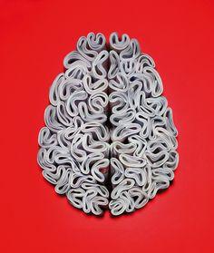 """""""Brain"""", The Economist."""