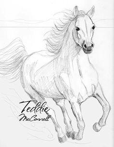 Omg, it's so beautiful! I love horses