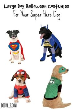 These Large Dog Halloween Costumes For Your Superhero Dog are perfect for making your costume party tons of fun this year.