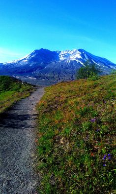 Mount St. Helens in the spring. (OC)(1536x2560px)