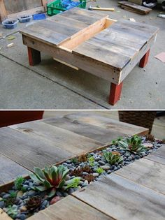 Awesome succulents garden table