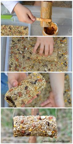Use recycled toilet paper or cardboard rolls to create homemade bird feeders. Great Earth Day or springtime activity for kids.