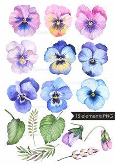 Watercolor Cards, Watercolor Flowers, Watercolor Paintings, Botanical Art, Botanical Illustration, Flower Images, Flower Art, Flower Drawing Tutorials, Art Prompts