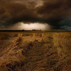 straw country  © Franz Schumacher