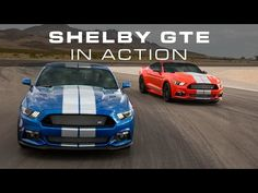 Shelby GTE offers lots of show, a bit of go, for lots of dough - Autoblog www.villaford.com
