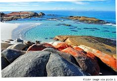 Tasmania, Bay of Fires Australia Great Vacations, Jpg, The Real World, Culture Travel, Tasmania, Holiday Destinations, Australia Travel, Oh The Places You'll Go, East Coast