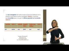Alemán para hispanohablantes: Verbos separables
